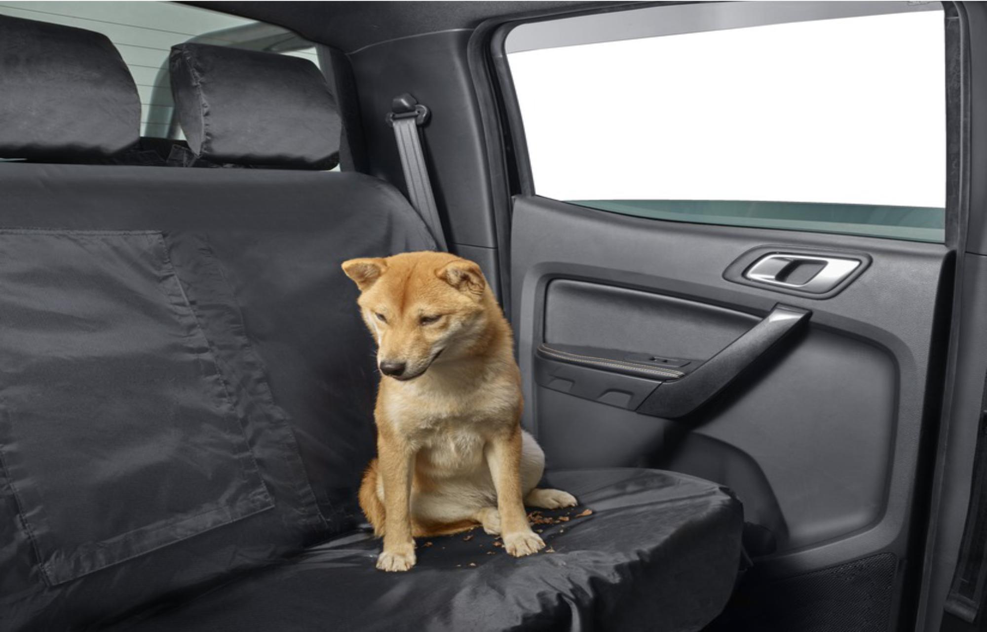 Ford Sitzbezug