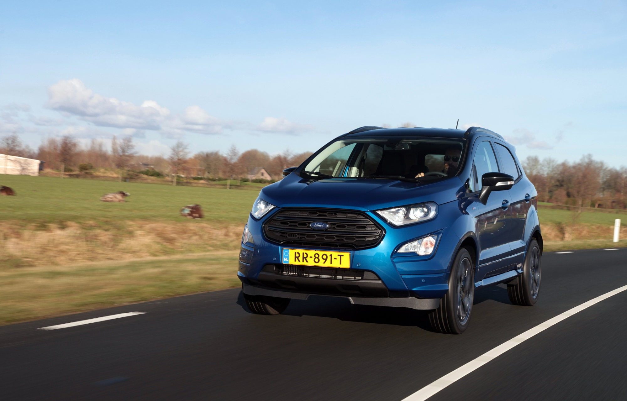 Ford EcoSport recycled plastic flessen